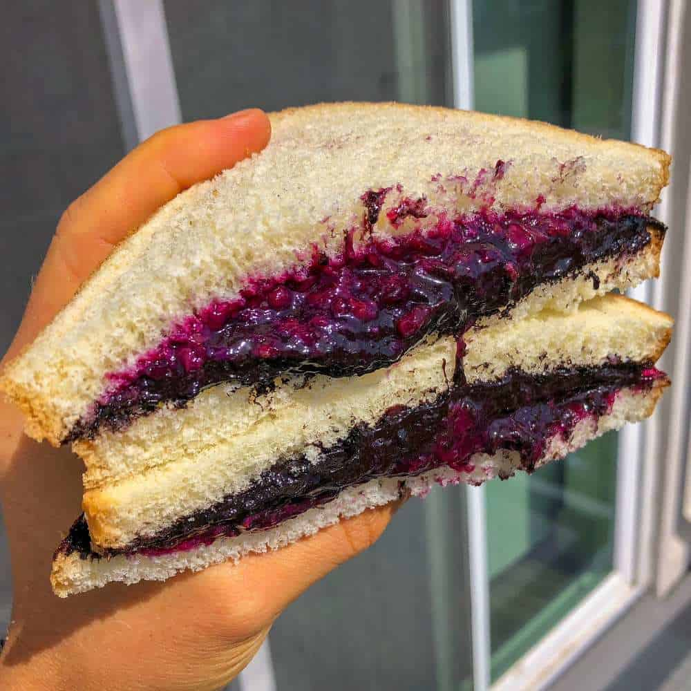 Oreo Cookie Butter & Blueberry Jelly Sandwich